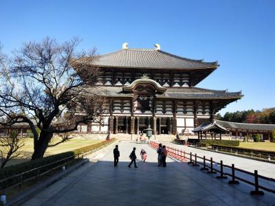 GoTot旅第4弾、汗ばむ陽気の京都で紅葉狩り おまけで大塚国際美術館。その3奈良へ日帰り