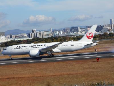 猪名川沿いの公園と飛行機