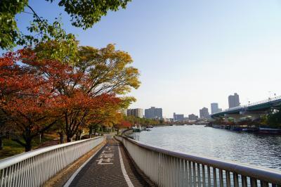 2020 大川の紅葉散歩(都島橋から蕪村公園にかけて)