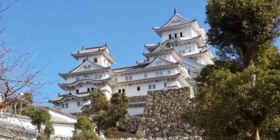 姫路城・鳥取砂丘・足立美術館・出雲大社。1泊2日の旅です。1/2