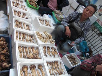 2008年 中国東北部・旧満州帝国の遺産を巡る-D(延辺朝鮮族自治州)