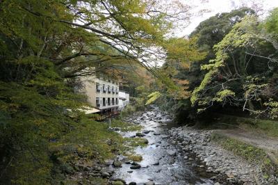 秋の伊豆旅♪ Vol.46 ☆湯ヶ島温泉:美しい秋の湯道めぐり♪