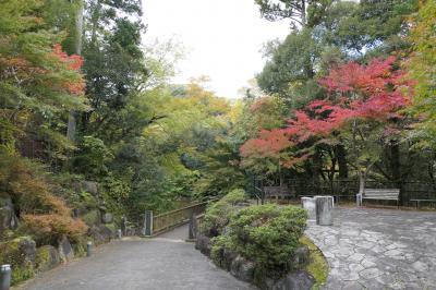 秋の伊豆旅♪ Vol.47 ☆湯ヶ島温泉:美しい秋の湯道めぐり♪