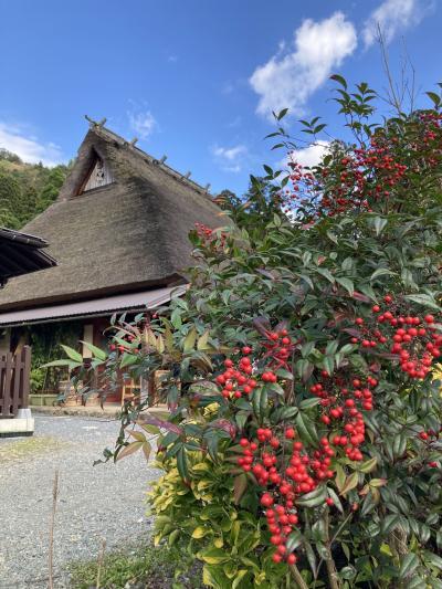 姪っ子ちゃんとマイクロツーリズム 「森の京都」GoTo美山 かやぶきの里
