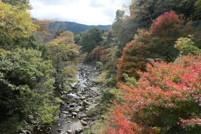 秋の伊豆旅♪ Vol.54 ☆湯ヶ島温泉:美しい秋の湯道めぐり♪