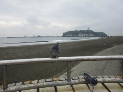 12月平日の江の島ちょい歩き