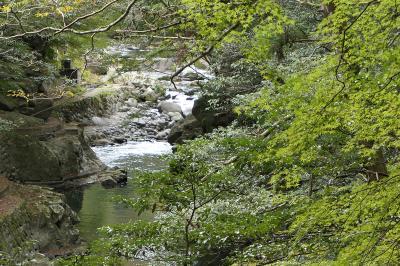 秋の伊豆旅♪ Vol.56 ☆湯ヶ島温泉:美しい秋の湯道めぐり♪