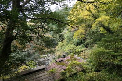 秋の伊豆旅♪ Vol.57 ☆湯ヶ島温泉:美しい秋の湯道めぐり♪