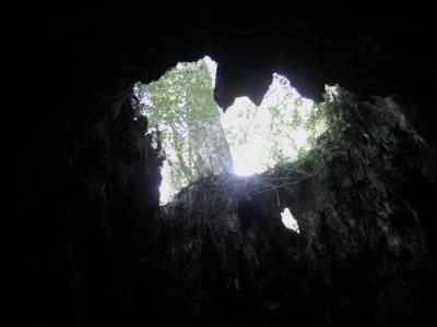 第4回山登り 屋久島・指宿(鹿児島県)2020年11月27日(2/8)