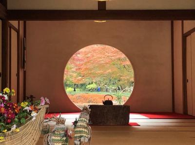 鎌倉のもみじがり ~明月院・長寿寺・海蔵寺~