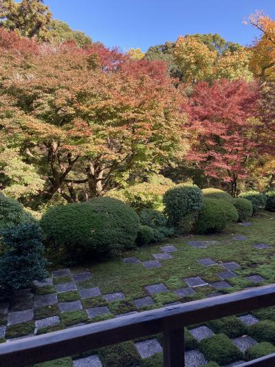 紅葉日帰り二人旅の京都GO TO利用1:東福寺