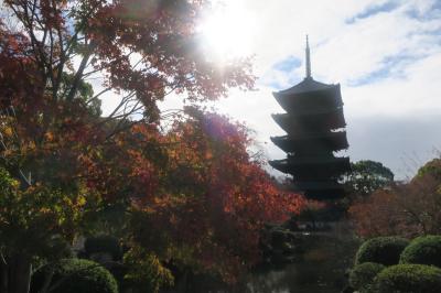 ワーケーション【第3段】 京都 ~後半~