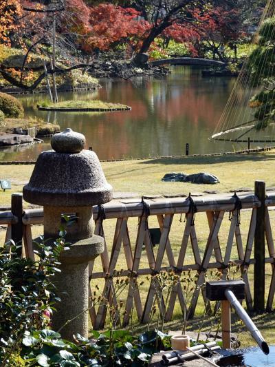 肥後細川庭園と目白庭園の紅葉を愛でる 2020