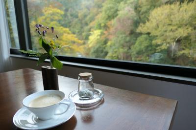秋の伊豆旅♪ Vol.63 ☆湯ヶ島温泉「アルカナイズ」:「ザ・スイート」朝霧の温泉とエスプレッソ♪