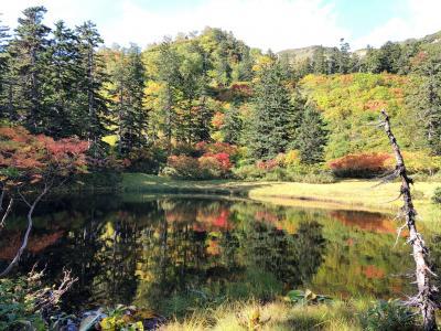 2020.09 紅葉を求めて久々の大雪山④…紅葉といえばやっぱり高原沼温泉