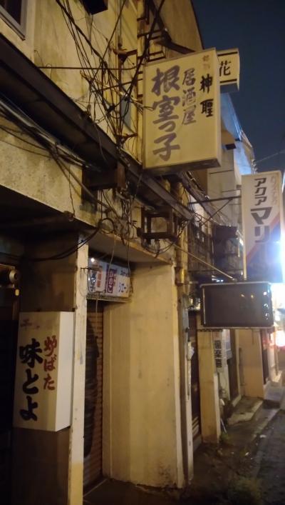 釧路 初日