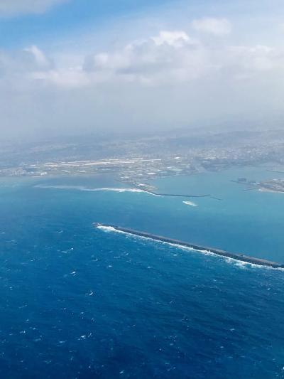 沖縄北部 2020秋 最終日