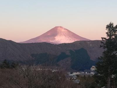 富士を見ながら箱根の湯④ 生命の星・地球博物館
