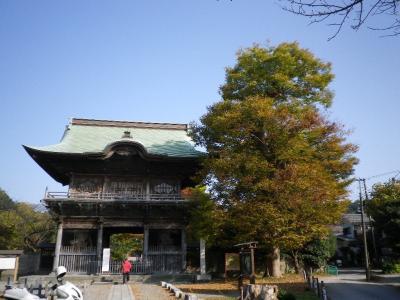 金沢文庫の称名寺で紅葉を見る