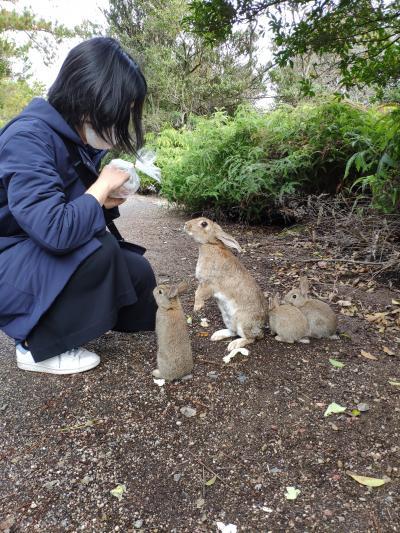 Go toトラベル。広島へ。 大久野島で、ウサギとふれあう。 一応、宮島、原爆ドームも行っといた。