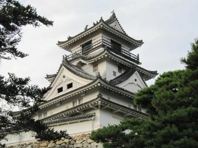 早朝に散歩がてら美しい高知城へ