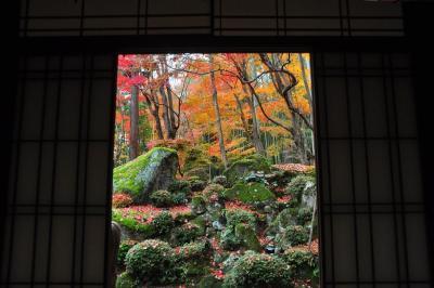 2020紅葉 石の寺 教林坊の紅葉と庭園(15)