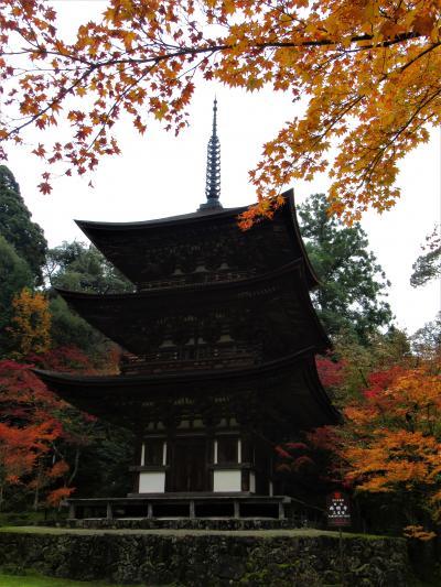 2019年11月 滋賀県・湖東 その4 湖東三山 西明寺の紅葉とランチ