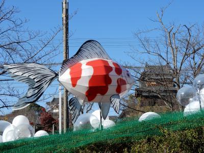金魚が泳ぐ城下町 大和こおりゃま