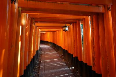 【京都】晩秋の京都~①伏見稲荷大社
