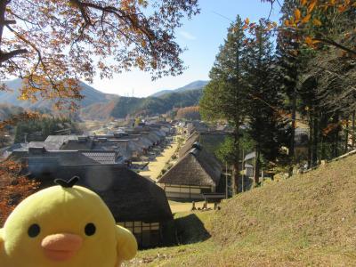 福島県 会津地方を たびするトリ