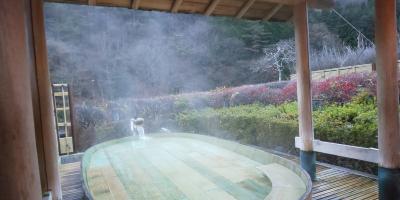 世界最古の温泉、慶雲館に泊まりたくて。