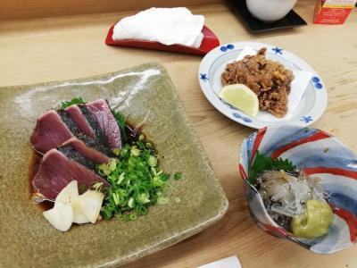 たまにはベタな観光旅行2009  「GoTo&観光リカバリーキャンペーンで高知&鰹タタキ&ウツボ料理&鯨料理&ドロメ」 ~高知~