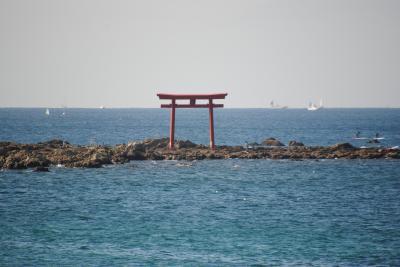 県内旅行で鎌倉から葉山へ。③billsで朝食~森戸神社