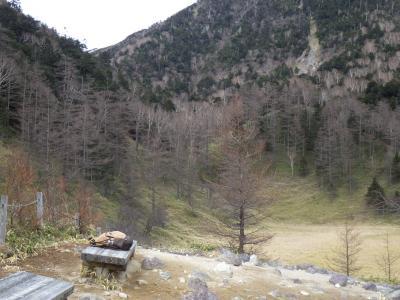 杉並木と刈込湖・切込湖