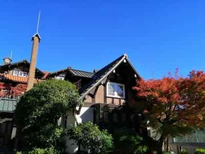 京都・神戸へGo To②(大山崎山荘~王子動物園)