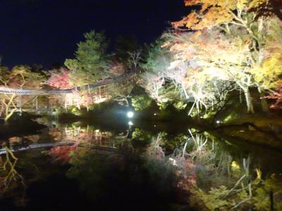 コロナ禍での京都の紅葉、今年最後のライトアップ