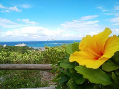2020.11.29~12.2 20回目の結婚記念日は沖縄でGOTOトラベルレンタカー旅行 その1