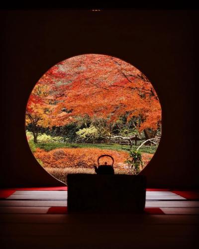 神奈川/鎌倉の円覚寺と明月院の紅葉を愛で横浜でステイケーション@インターコンチネンタル横浜Pier8(2020年12月)