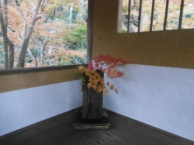一条恵観山荘・報国寺などを廻りました