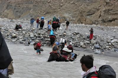 ヤク漬けのパキスタン その8 ヤギ道の真実