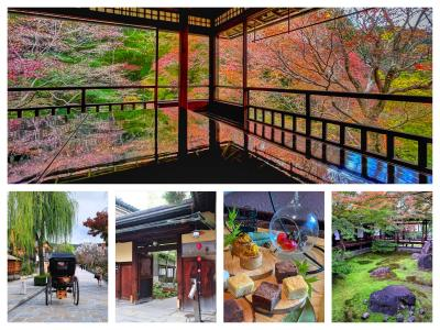 瑠璃光院から祇園 東山方面☆るなさんと一緒に紅葉狩り♪