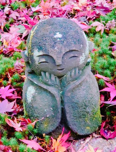 恒例!カニを食べに行こう城崎温泉。そして紅葉狩り京都観光。(3)曼殊院門跡、詩仙堂、圓光寺