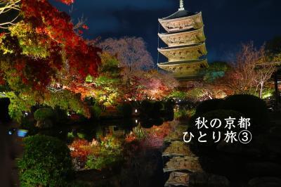 秋の京都・ひとり旅③【嵐山・瑠璃光院・東寺・平等院】#コナン
