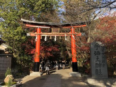 宇治を歩く。(2)宇治神社と世界遺産・宇治上神社