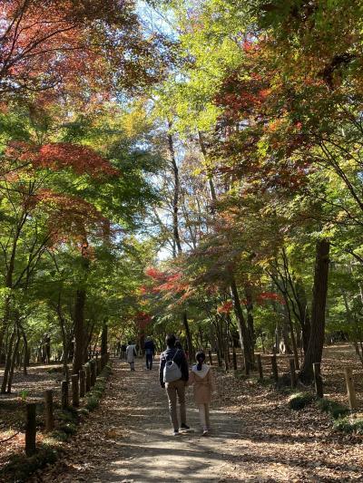 紅葉の平林寺散策