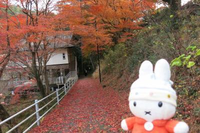 グーちゃん、忘年合宿で湯谷温泉へ行く!(湯の風HAZUさんにて・・・。編)