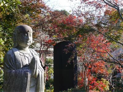 晩秋の興禅院・小林もみじ園☆2020/12/03