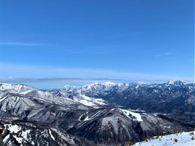 2020年1月25日 白馬八方尾根☆シーズン2度目のアルピーヌ!主人はスキー仲間とコロナエスケープテラス☆私はカレーのうさ吉('∀'♪