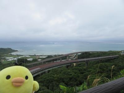 沖縄県 南城市と与那原町をたびするトリ