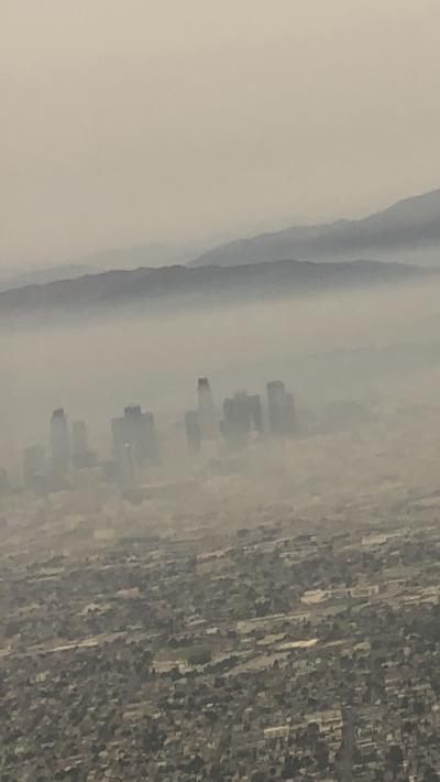 コロナ禍&山火事のロサンゼルス